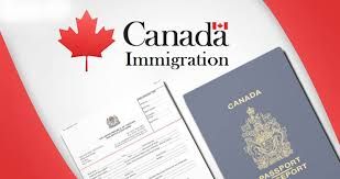Swim To Canada-  Immigration & Settlement Services